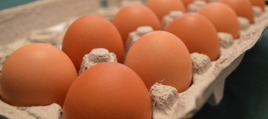 Confiscan miles de huevos por sospechas de contaminación