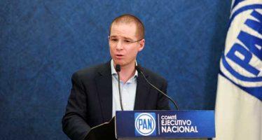 Panista acusa a Ricardo Anaya de hacer fraude