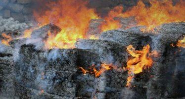 PGR de la CDMX incinera más de una tonelada de psicotrópicos