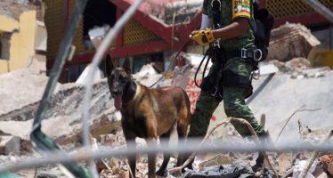 """Voluntarios dejan """"el corazón"""", entre escombros de Tlatempa"""