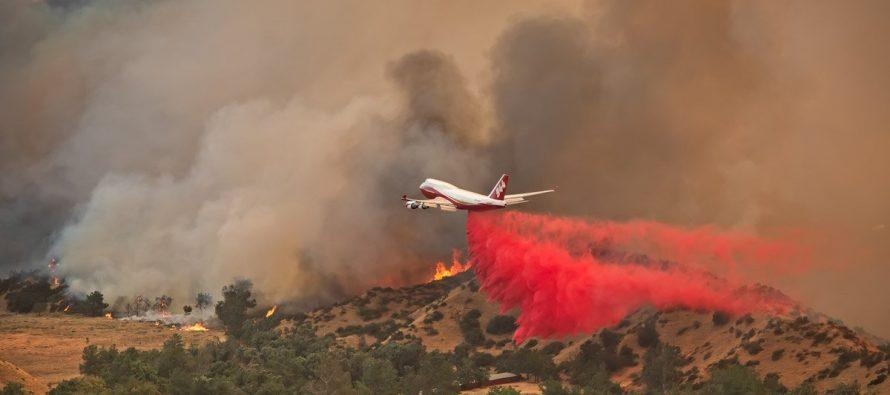 Provocan 11 muertes, incendios forestales en California
