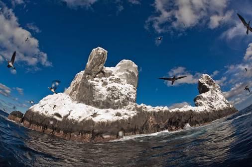 Otra vista del Parque Nacional marino de No Pesca de Revillagigedo. SEMARNAT