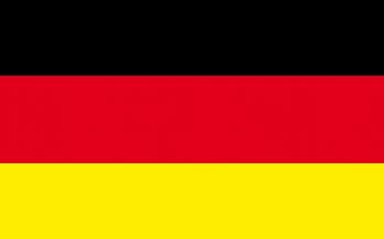 Ministerio de Defensa alemán prevé colapso de la UE
