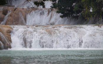 Cascadas de Agua Azul volverán a la normalidad hoy: Conagua