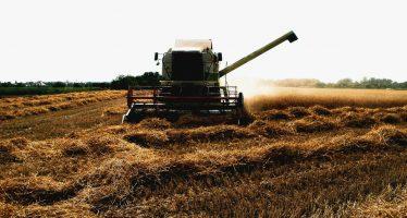Rusia: una superpotencia cerealística