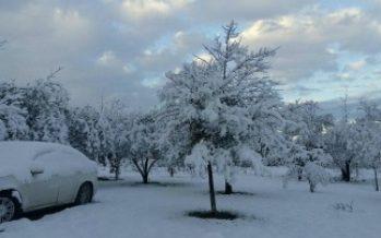 Registran primeras nevadas áreas naturales protegidas