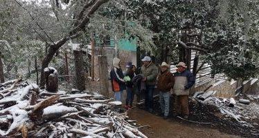 En emergencia 30 municipios de Chihuahua por helada y nevada