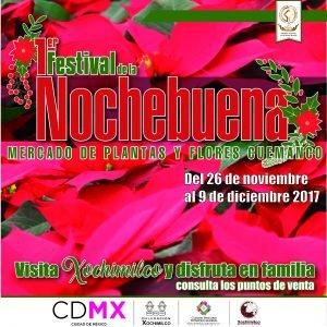 Festival de la Nochebuena 3