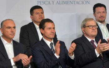 México, en la ruta correcta para ser potencia agroalimentaria