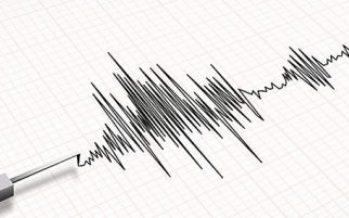Sin daños en Guerrero tras sismo de 5.0 grados