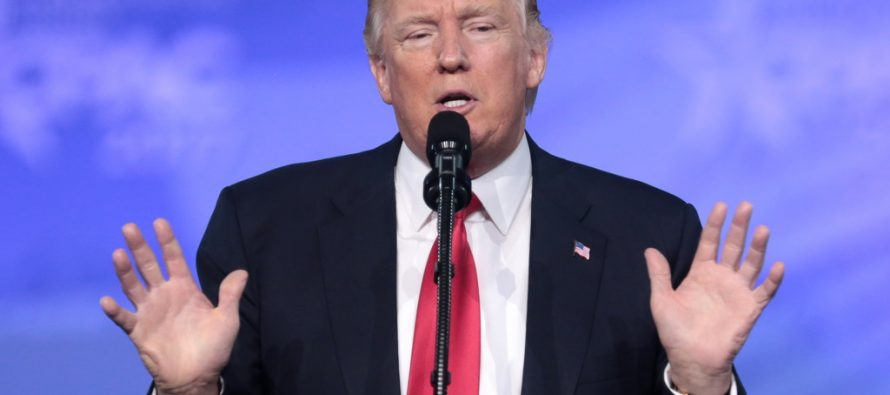 Trump acusa a Bannon de filtrar información falsa