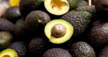 Aguacate a $70 por kilo en mercados de la República Mexicana