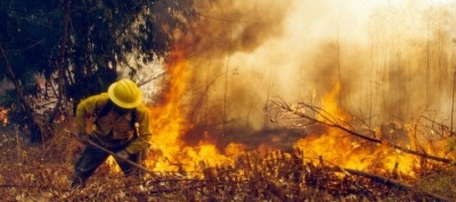 Comienza temporada de incendios forestales en el país
