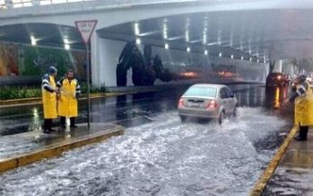 Gobierno capitalino apoya a productores afectados por lluvia