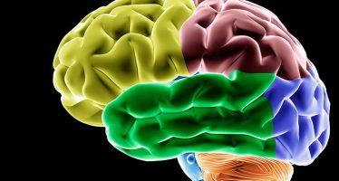 Gigante farmacéutico abandona investigación contra el alzhéimer
