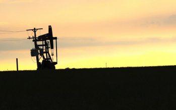 Precios de crudo reportan abrupta caída