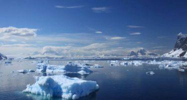 Detectan altas temperaturas en el mar antártico