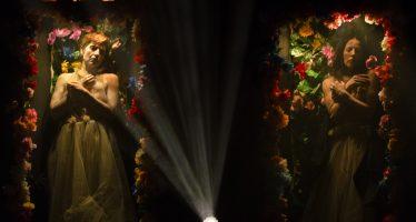 """""""Entre Sueños y Flores"""" regresa al Centro Cultural """"Los Talleres"""""""