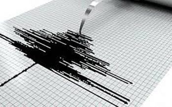 Sin daños en la capital por sismo en la Venustiano Carranza