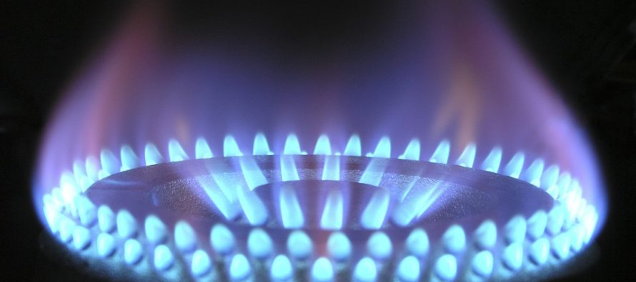 Gas LP subió más de 50 por ciento en cinco años: Reyes Álvarez