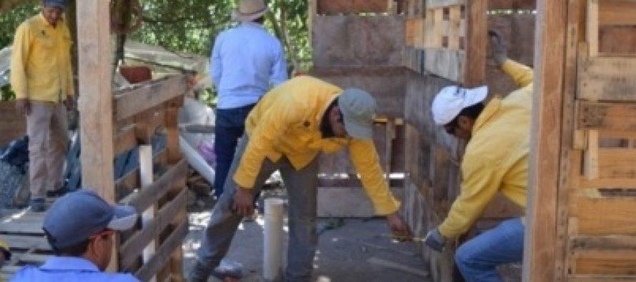 Peña Nieto recorrerá en Puebla zona afectada por sismo
