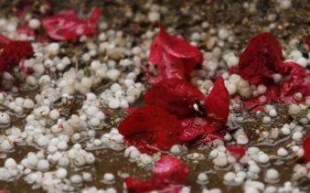 Cae granizo en Gustavo A. Madero, Cuauhtémoc e Iztapalapa