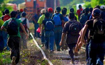 Megaoperativo migratorio deja 253 arrestos en Florida