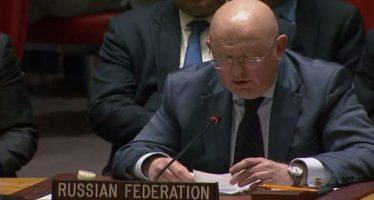 Interpretan resolución del Consejo de Seguridad Nº. 2401