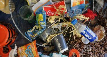 China se niega a aceptar más basura; la envía de vuelta a EEUU