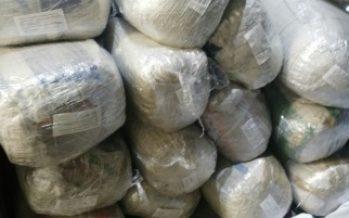 Localizan 222 kilos de marihuana en empresa de paquetería