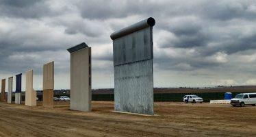 Muro de Trump devastaría vida silvestre en la frontera biólogos