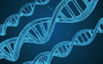 Científicos marcan plazos para la creación de un hombre inmortal