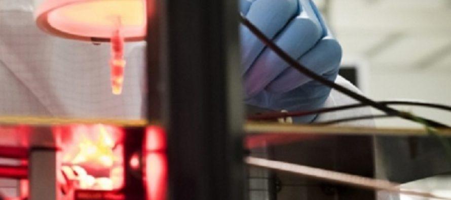 Investigadores de Suecia e Israel desarrollan prótesis de retina