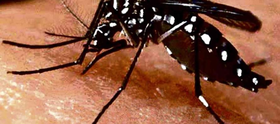 Se reportan 21 casos de zika en México, según la Secretaría de Salud