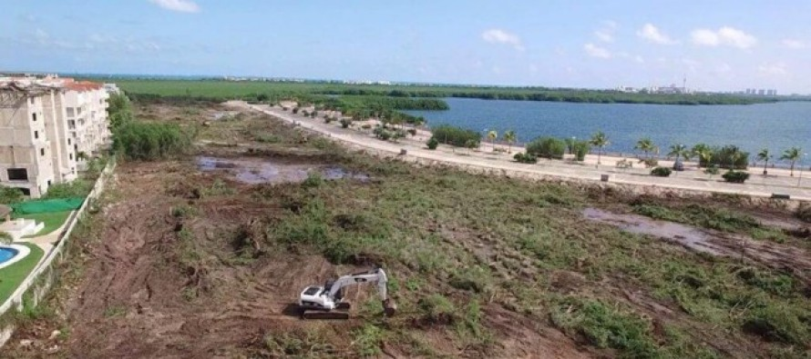 Profepa emplaza a Fonatur a cumplir con programa de rescate en Tajamar