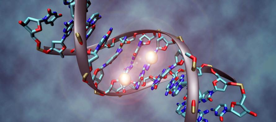 Reino Unido aprueba la modificación genética de embriones humanos