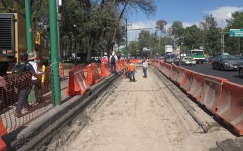Habrá 11 meses de obras para el corredor de la Línea 7 del Metrobús sobre Reforma