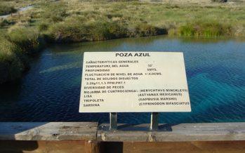 Historia, cultura y naturaleza, principales atractivos de Coahuila