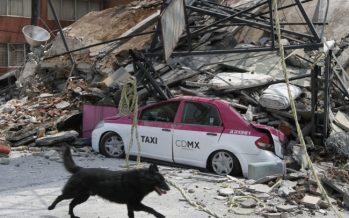 Entre miedo, dudas y nervios capitalinos viven el sismo