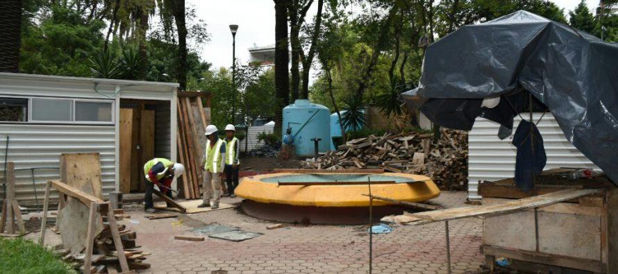 Mejorarán el Jardín del Arte; quitarán árboles muertos o peligrosos