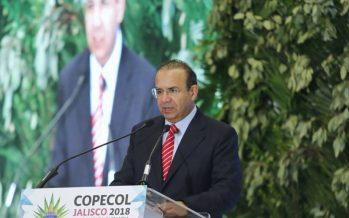 México tendrá elecciones con instituciones sólidas: Navarrete