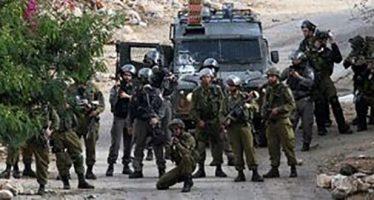 Detienen a 3 palestinos fuerzas de ocupación israelíes