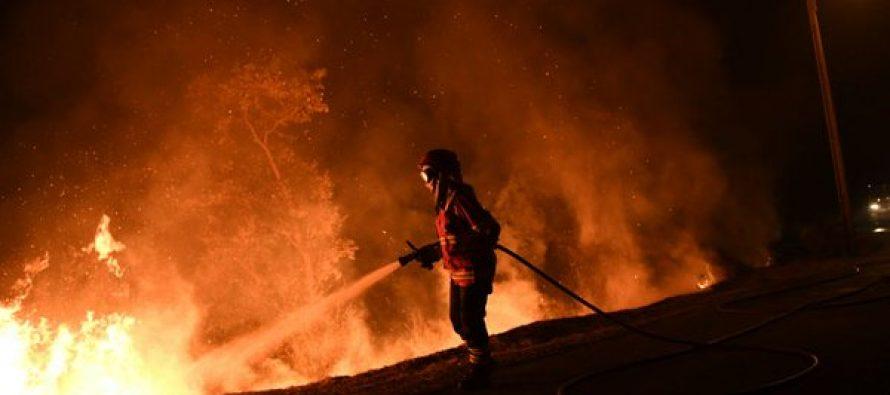 Incendio deja ocho muertos y 50 heridos en Portugal