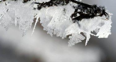 Posible caída de nieve o aguanieve se pronostica en el noroeste del país