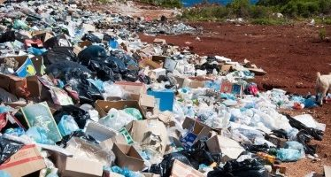 ONU insta a celebrar Día Mundial del Medio Ambiente sin plásticos