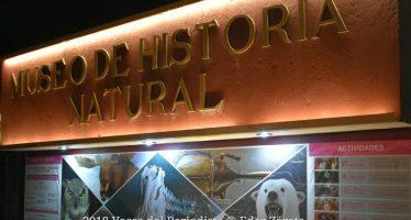 Llega Feria de Ciencias de la UNAM al Museo de Historia Natural