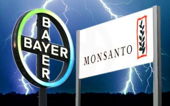 EEUU da luz verde a la adquisición de Monsanto, por Bayer