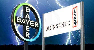 Fusión Bayer-Monsanto: cártel que destruye la vida