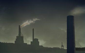 """Opinión: Día Mundial del """"MIEDO"""" ambiente"""