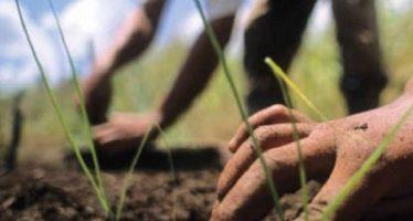 Presentan indígenas y campesinos propuesta ambiental a próximo gobierno